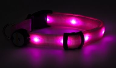 Mace Brand Night Beams Pet Collar- Pink