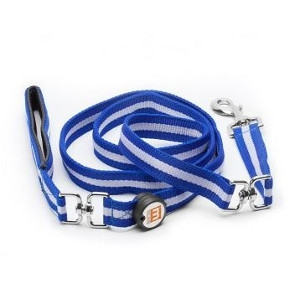 Mace Pet Leash Blue