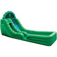 Freaky Frog Wet Slide
