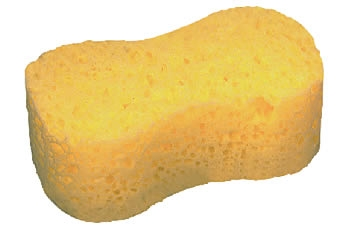 All Purpose Sponge