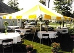 Canopy 20'x20' yellow & white csup
