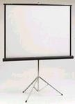 Projection Screen 8'x8'
