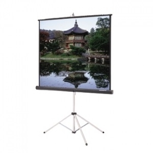 Projection Screen, 70