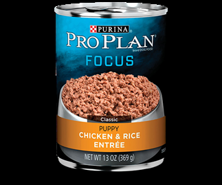 Purina Pro Plan Focus Puppy Chicken and Rice Entree 13 ounce can