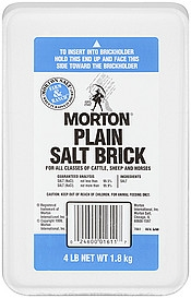 Morton Plain Salt Brick 4 lb.