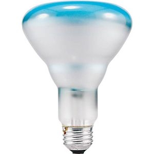 Sylvania® Spot-Gro™ 65W/120V Incandescent Grow Light Bulb