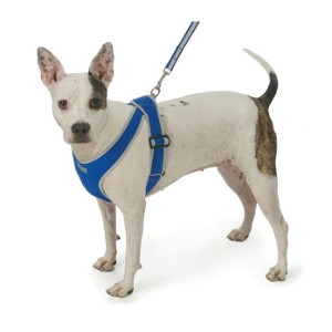My Canine Kids INC Precision Fit Nylon Harness