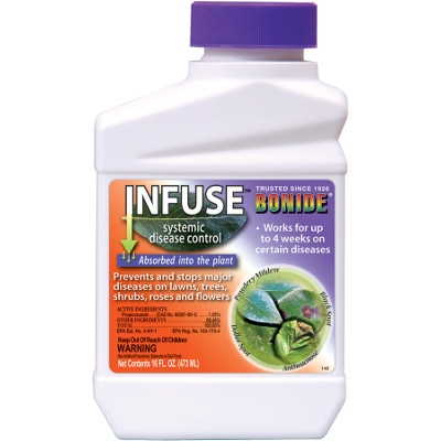 Bonide Infuse Systemic Fungicide, 16 oz
