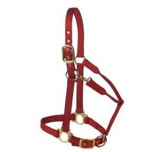 Premium Halter with Adjustable Chin and Throat Snap