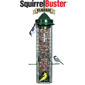 Brome Bird Care Classic Squirrel Buster