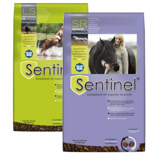 Blue Seal Sentinel Horse Feeds