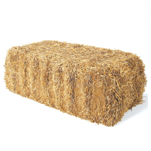 Straw Bale Myagway Bethel Ct Manchester Ct