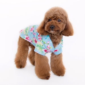 DOGO Pet Fashions Tropical Island Shirt - Blue