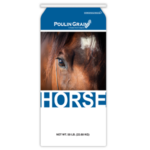Poulin Grain Forage Extender Mini Bites Horse Feed