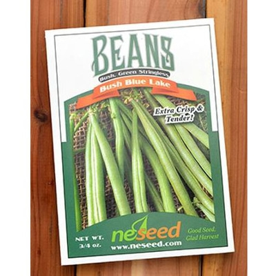 NE Seed Blue Lake Bush Green Bean Seeds