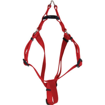 Coastal Dog Harness