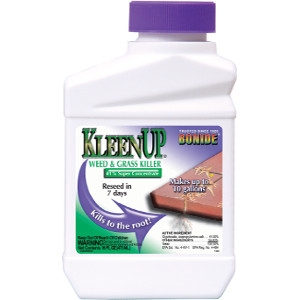 Bonide KleenUp 41% Concentrate Pint