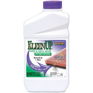 Bonide KleenUp 41% Concentrate Quart