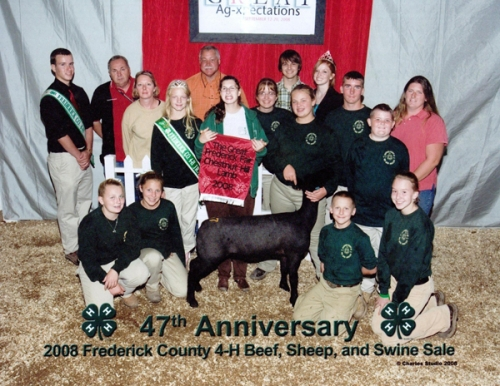 2008 Frederick County 4-H Beef, Sheep, and Swine Sale