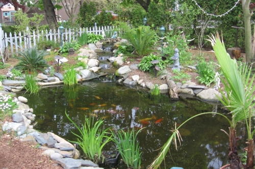 Enjoy a pond in your very own backyard.