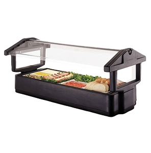 Portable Salad Bar With Sneeze Guard, 6'