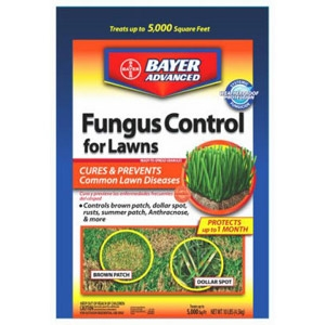 Bayer Fungus Control for Lawns