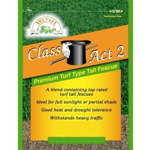 Class Act 2 Tall Fescue