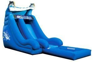Super Splash Down Inflatable Water Slide