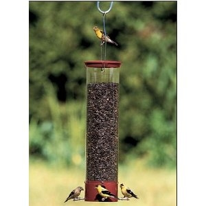Squirrel Proof Birdfeeder Droll Yankee Dipper
