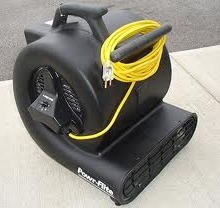 Carpet Blower, Carpet dryer