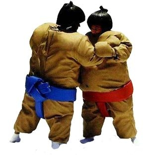 Sumo Wrestling Inflatable