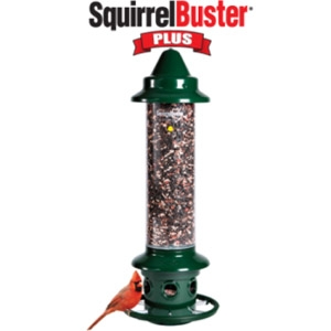 Brome Squirrel Buster Plus
