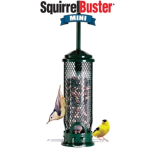 Brome Squirrel Buster Mini