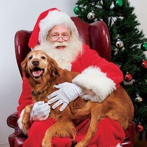 FREE Pet Photos with Santa