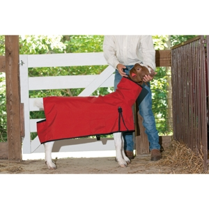 Goat Blanket - Red