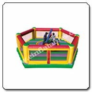 Gladiator Joust And Boxing Ring Combo Inflatable Game