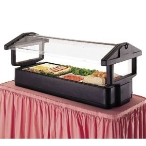 Salad Bar with Sneeze Guard