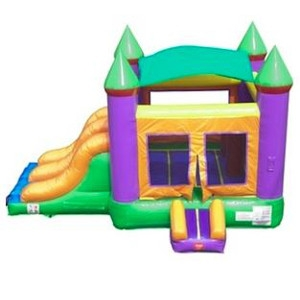 Inflatable Castle Combo Bounce House