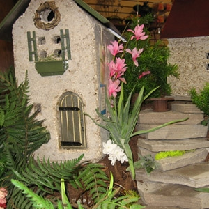 Miniature and Fairy Gardens by Adam New