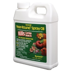 Year-Round Spray