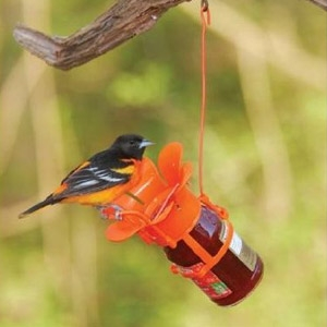 Songbird Essentials Jelly/Jam Feeder