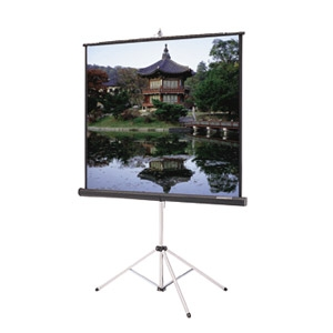 Epson Tripod Screen