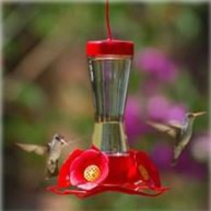 Perky-Pet® Pinch-Waist Glass Feeder with Nectar