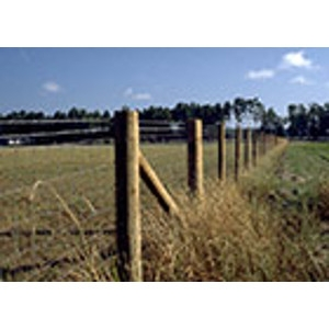 Hills Products Wood Posts