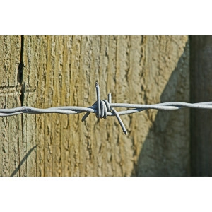 Barb Wire 4 Point