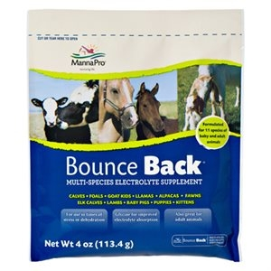 Manna Pro® Bounce Back® Electrolyte Supplement